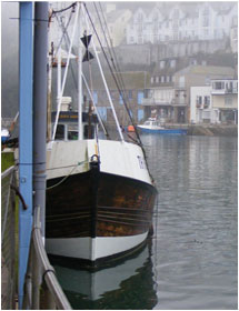 Contact Ocean Harvest for the freshest fish in Cornwall